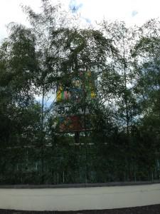 竹のディスプレイ
