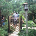 枝折戸 @Anderson Japanese Garden