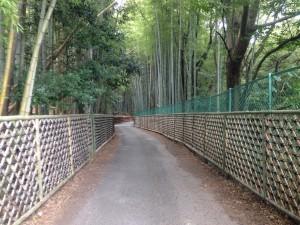 竹の径 寺戸垣