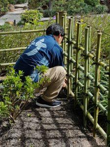 アメリカ森上庭園竹垣morikamijapanesegarden