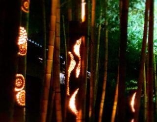 竹あかりオンラインイベント開催のお知らせ「みんなの想火」 2020年7月23日(木)